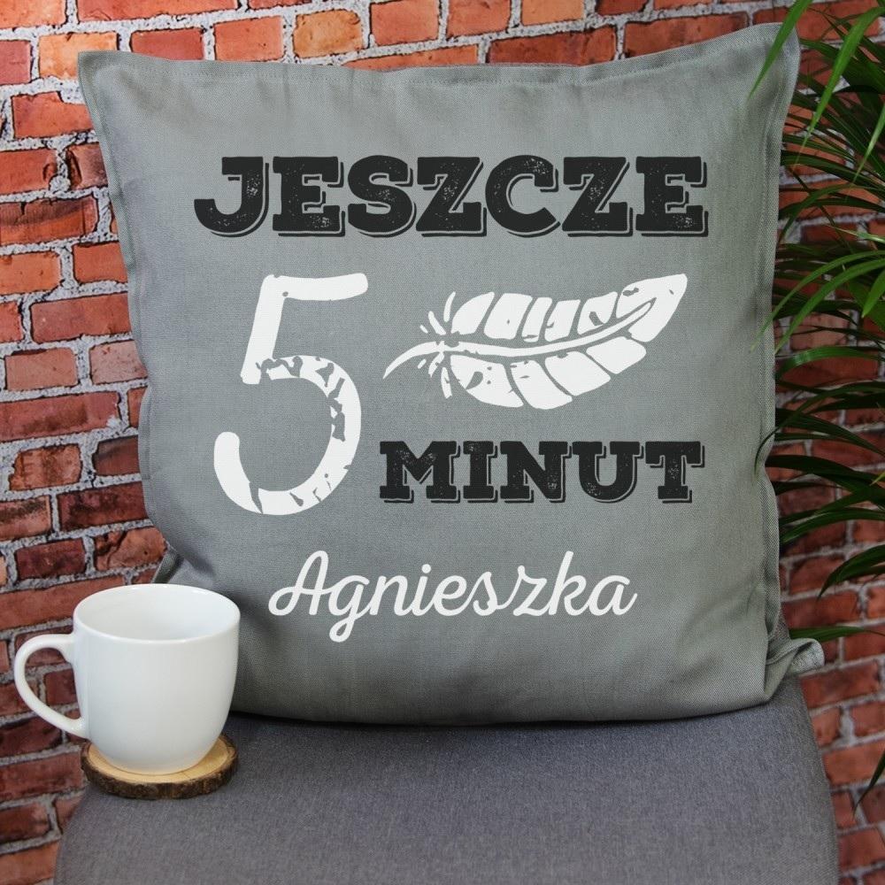 Poduszka - prezent dla koleżanki z pracy
